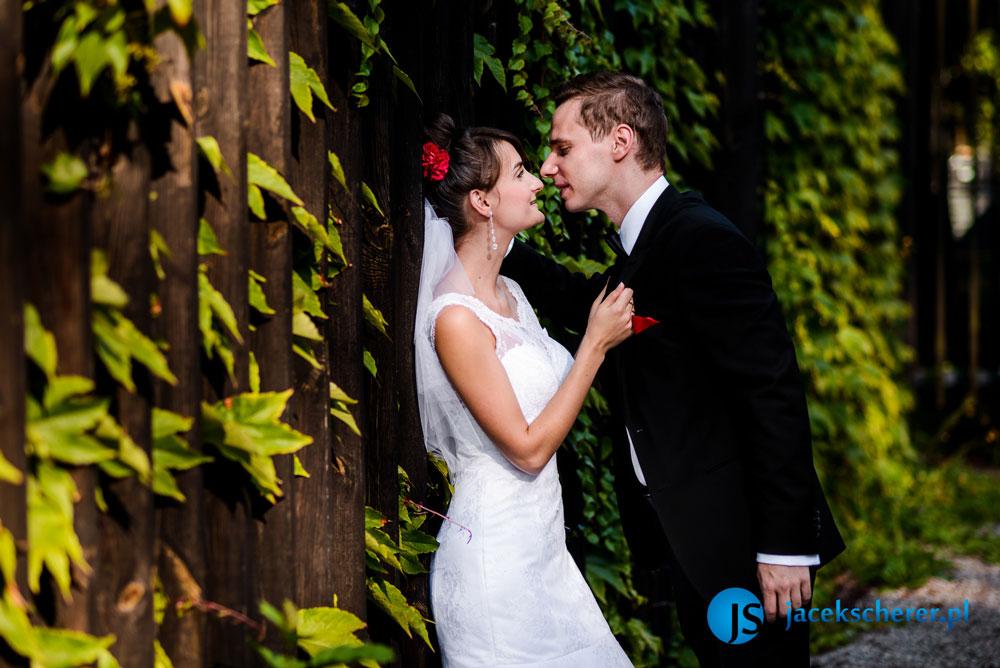 fotograf slubny lublin 50 - Natalia i Damian | Hotel pod Kasztanami